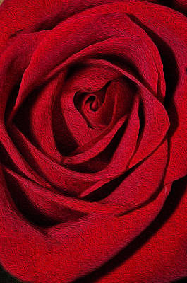 Photograph - The Flow Of Love by Teri Schuster