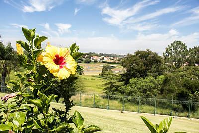 Campinas Photograph - The Flower by Jose Eduardo Marcondes