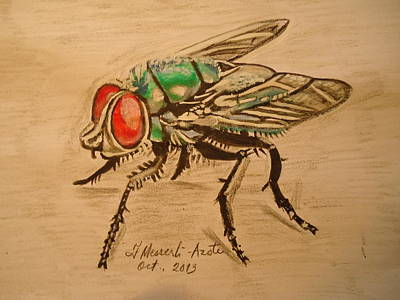 The Fly Art Print by Fladelita Messerli-