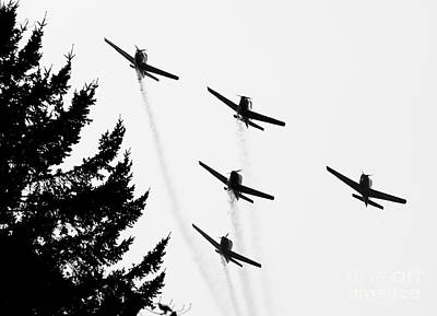 The Fly Past Art Print by Chris Dutton