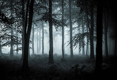 Enchanted Photograph - The Fog by Ian Hufton
