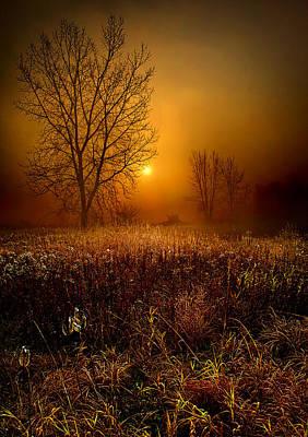 The Fog Print by Phil Koch