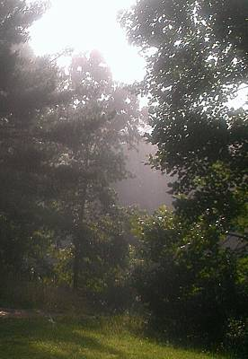 Photograph - The Fog Rolls In by Lew Davis