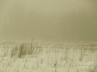 Photograph - The Fog Settles by Tim Good