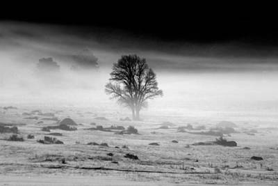 Dark Photograph - The Fog by Shane Bechler