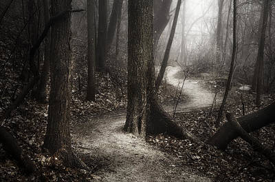 Brown Leaves Photograph - The Foggy Path by Scott Norris