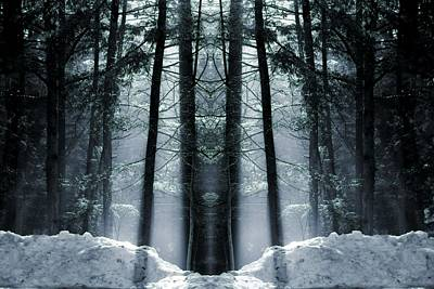 Black Is Beautiful Wall Art - Photograph - The Forest Is Alive by Dan Sproul