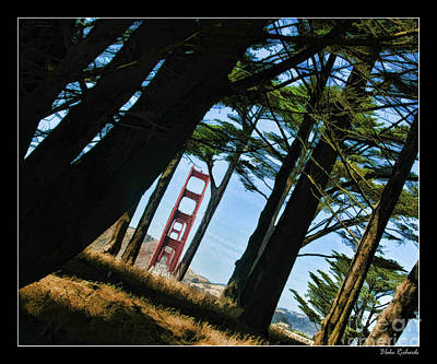 Photograph - The Forest Of The Golden Gate by Blake Richards