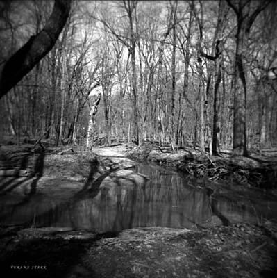 The Forest Art Print by Verana Stark