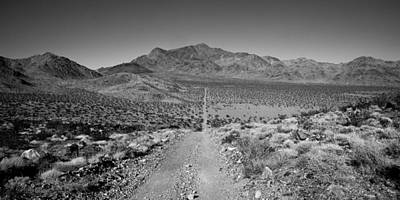 Dirt Roads Photograph - The Forever Road by Peter Tellone