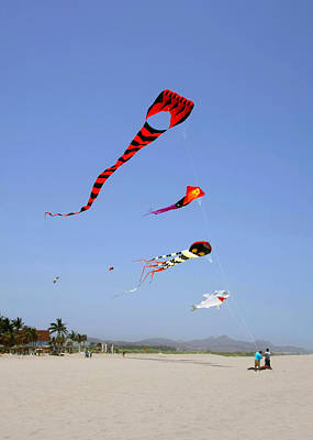 The Forgotten Joy Of Soaring Kites Print by Christine Till
