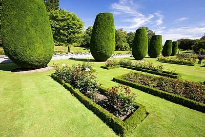 The Formal Gardens Of Lanhydrock Print by Ashley Cooper