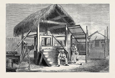Shed Drawing - The Forthcoming Transit Of Venus Shed At Honolulu by English School