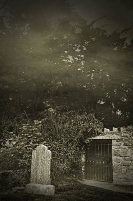Photograph - The Fortingall Yew by Jane McIlroy