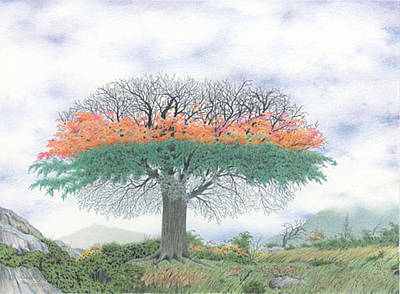 The Four Seasons Tree Art Print by Wilfrid Barbier