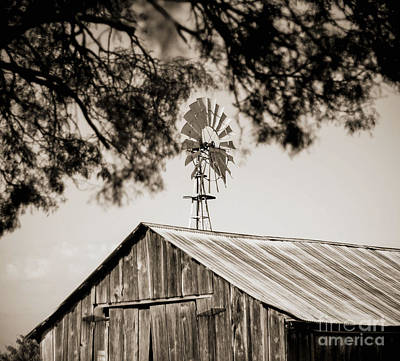Photograph - The Framed Windmill by Amber Kresge