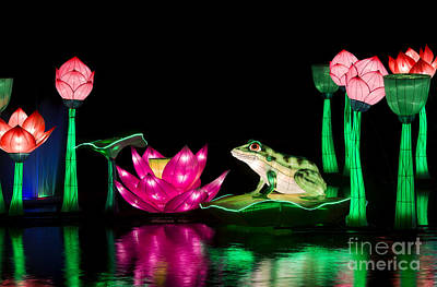 The Frog And Lotus Print by Tim Gainey