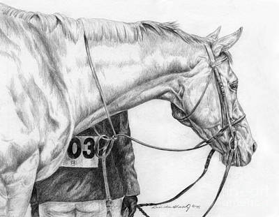 Horse Pencil Drawing Drawing - The Front Of The Line by Linda Shantz