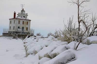Photograph - The Frozen Sentinel by Frederic Vigne