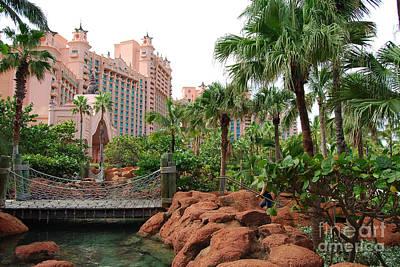Photograph - the Garden at Atlantis by Mark Spearman