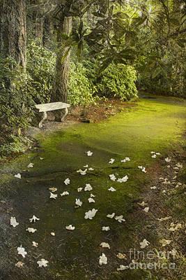 The Garden Bench Art Print