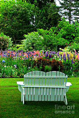 Photograph - The Garden  by Mindy Bench