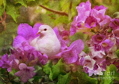 The Garden Of White Dove Art Print by Olga Hamilton
