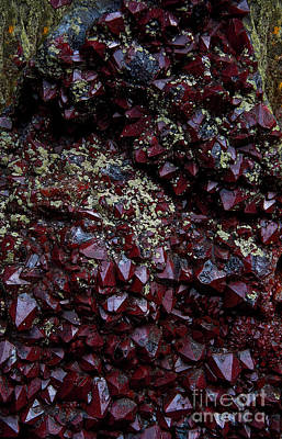 Photograph - The Garnet Gnome Abstract by Lee Craig
