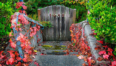 Photograph - The Gate by Cassius Johnson