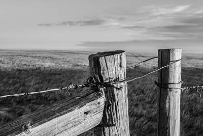Photograph - The Gate by Dwayne Schnell