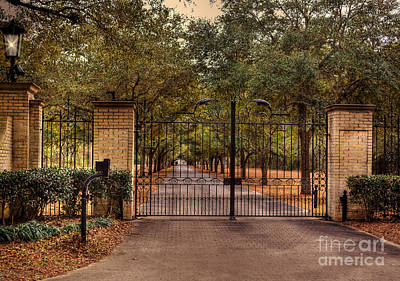 Photograph - The Gate by Kathy Baccari