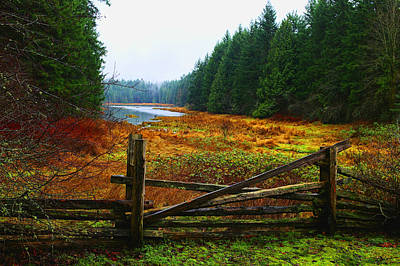 Photograph - The Gate by Lawrence Christopher