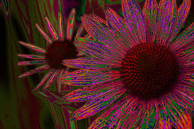 The General Cone Flower Back In The Day Art Print by Lesa Fine