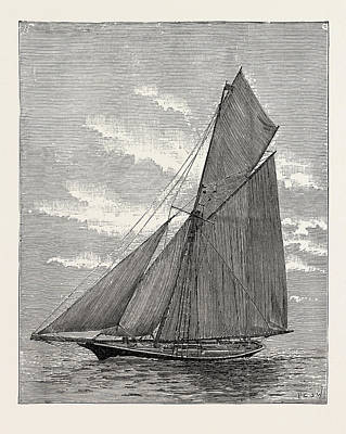 Thistle Drawing - The German Emperors Yacht Meteor by English School