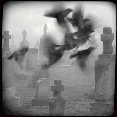 Birds In Graveyard Photograph - The Ghost Birds by Gothicrow Images