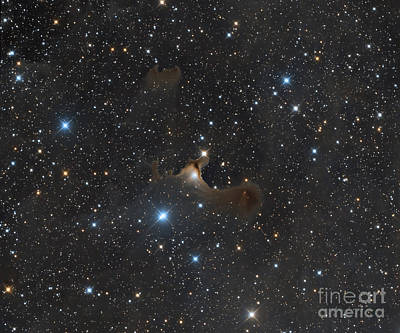 Photograph - The Ghost Nebula, Vdb 141 by Michael Miller