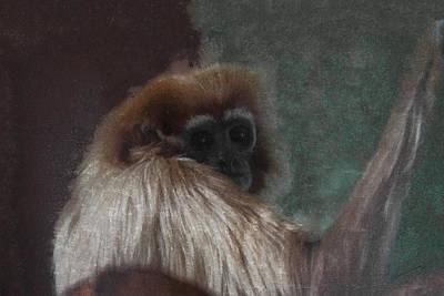 Ape Digital Art - The Gibbon by Ernie Echols