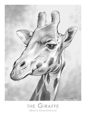 African Animals Drawing - The Giraffe by Greg Joens