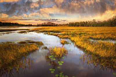 Photograph - The Glades At Sunset by Debra and Dave Vanderlaan