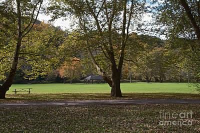 Photograph - The Glen by William Norton