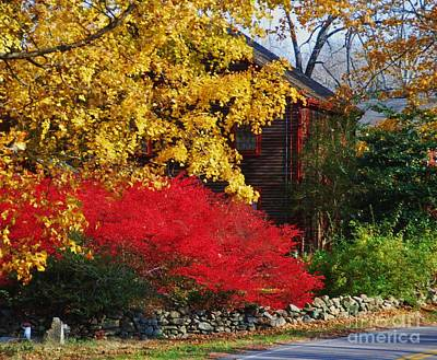 New England Fall Shots Photograph - The Glory Of Fall 2 by Marcus Dagan