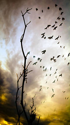 Flock Of Bird Photograph - The Gods Laugh When The Winter Crows Fly by Bob Orsillo