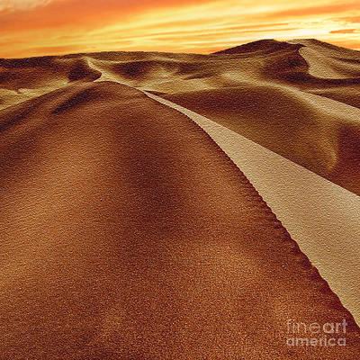 The Golden Hour Anza Borrego Desert Print by Bob and Nadine Johnston