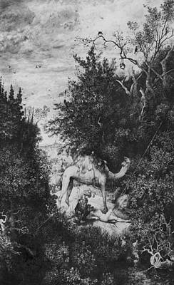 Camel Drawing - The Good Samaritan by Rodolphe Bresdin