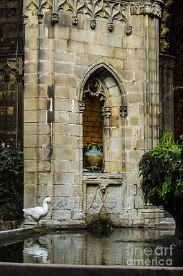 Photograph - The Goose And The Urn by Deborah Smolinske