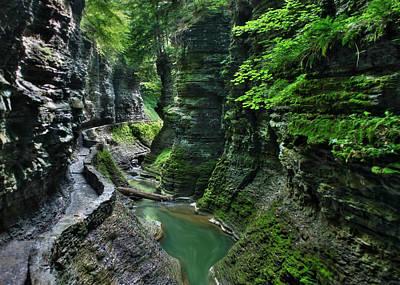 The Gorge Trail Art Print by Lori Deiter