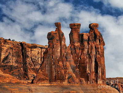 Art Print featuring the photograph The Gossips by Shirley Mangini