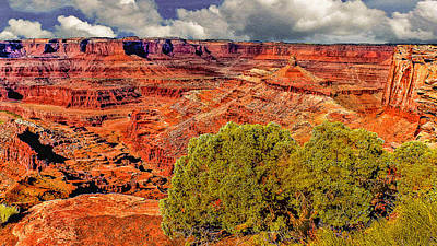 Photograph - The Grand Canyon Dead Horse Point by Bob and Nadine Johnston