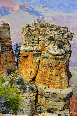 Photograph - The Grand Canyon by Deb Buchanan