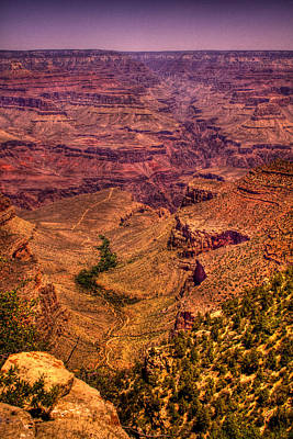 Arizona Photograph - The Grand Canyon From Bright Angel Lodge by David Patterson